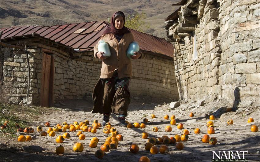 Nabat filmi İranda mükafat qazanıb