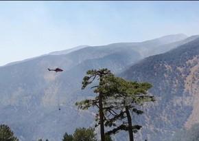 МЧС Азербайджана приступило к тушению новых пожаров в Мугле
