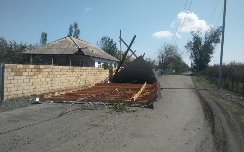 В Загатале сильный ветер нанес серьезный ущерб 7 селам