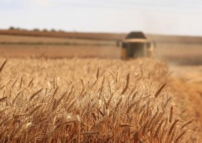 Azerbaijan imports 1.4 million tonnes of grain from Russia