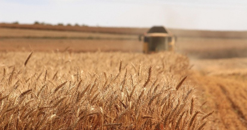 Azerbaijan imports 1.4 million tonnes of grain from Russia