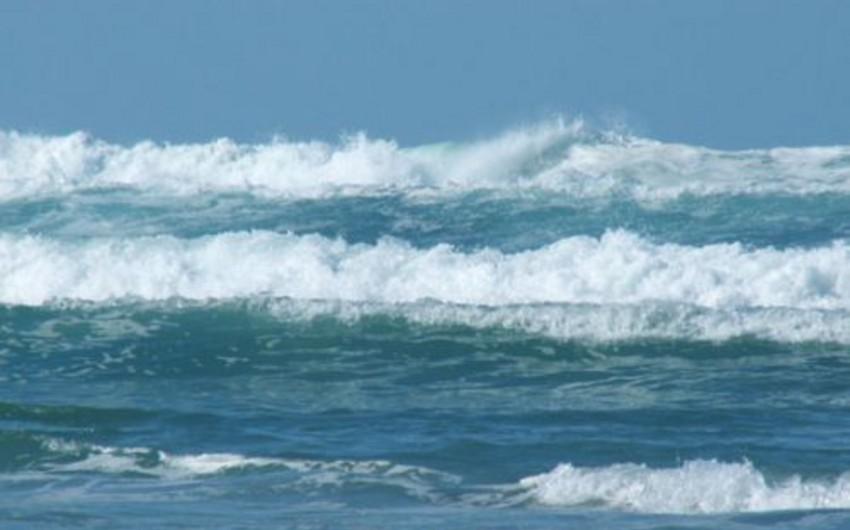 Okean suyunun səviyyəsi sürətlə artır