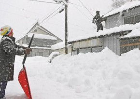 В Японии из-за снегопадов погибли восемь человек