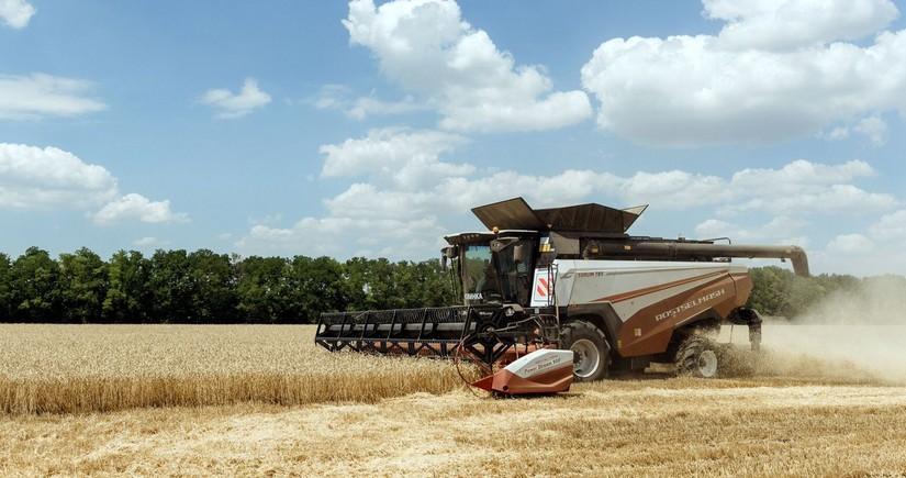 Russia introduces grain export quota