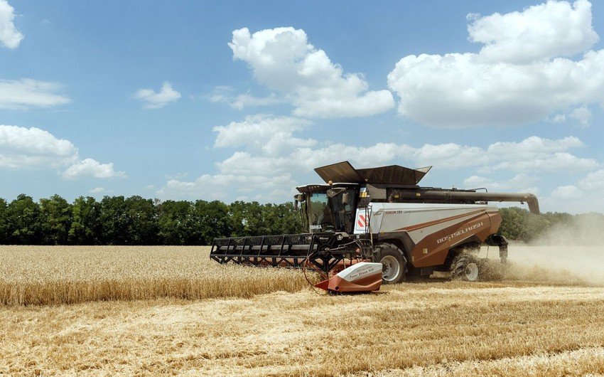 Россия ввела квоту на экспорт зерна
