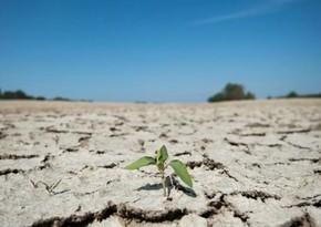 Человечеству грозит дефицит воды в ближайшее десятилетие