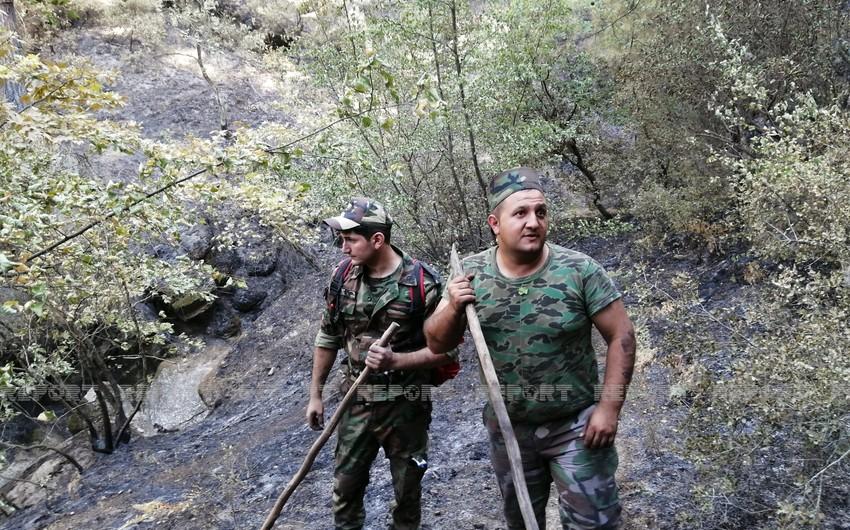 FHN-in qüvvələri Türkiyənin Aydın şəhərinin yaşıllıq zolağındaki yanğını söndürüb