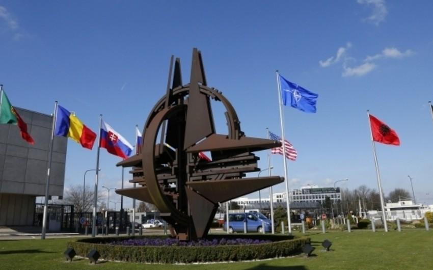 NATO Polşada çevik qüvvələrin təlimini keçirəcək