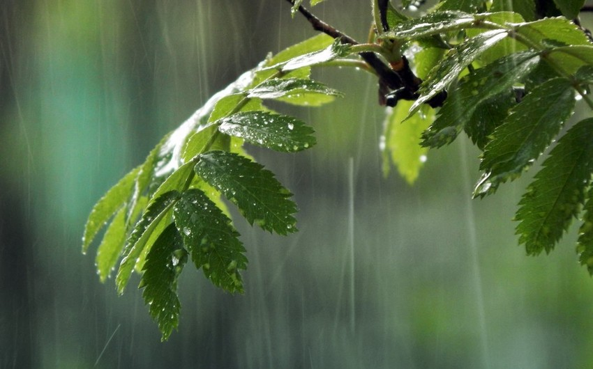 Завтра в Азербайджане ожидаются ливни
