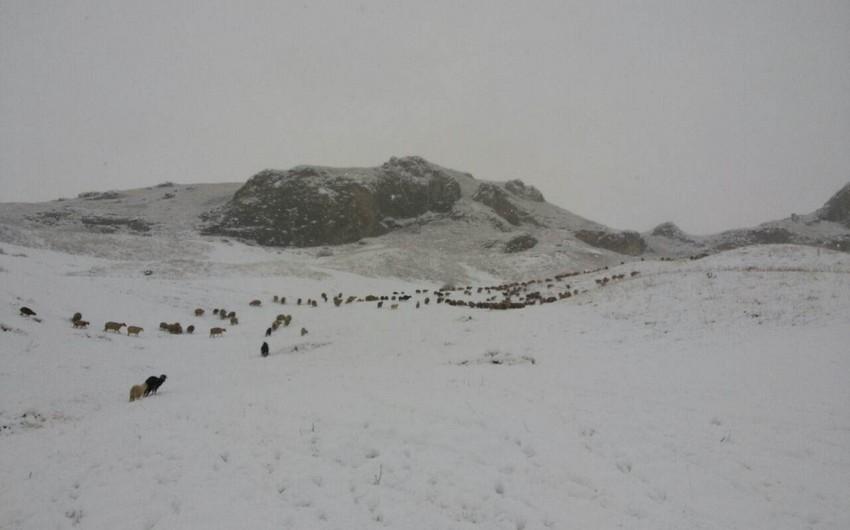 Azərbaycana ilk qar yağıb - FOTO