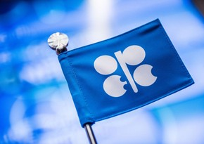 IEA: OPEC countries fulfilled deal by 124%, non-OPEC countries by 94%