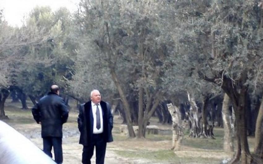 Akif Çovdarovun məhkəməsi təxirə salınıb