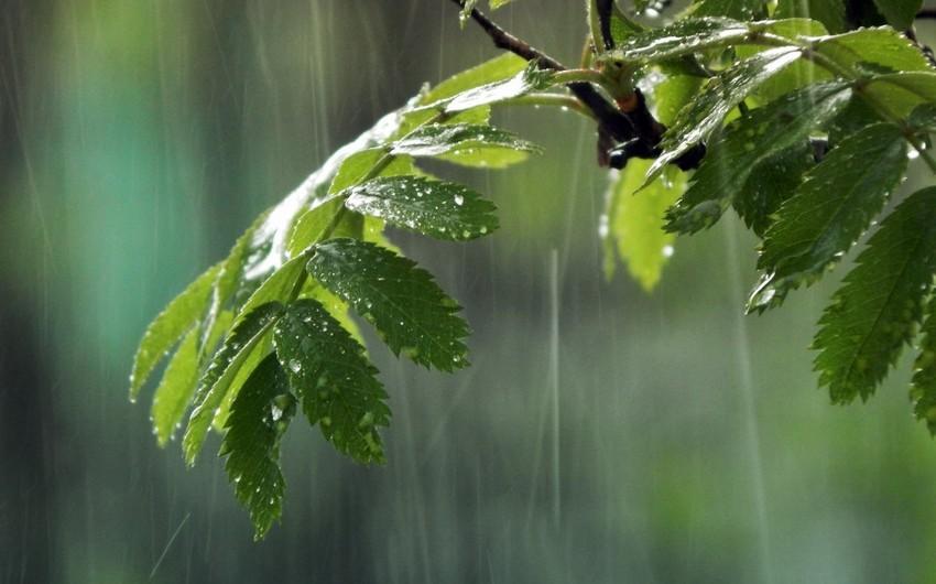 Sabah Azərbaycanın rayonlarında yağış yağacaq