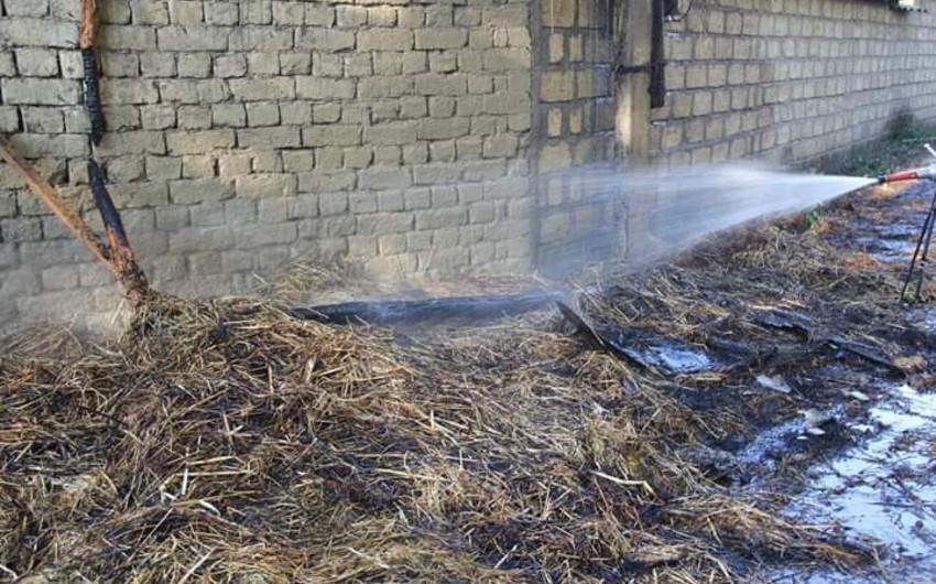 В Гейчае сгорел хлев - ВИДЕО