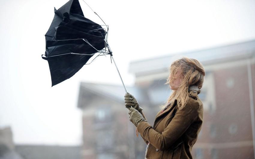 Завтра синоптики прогнозируют сильный ветер