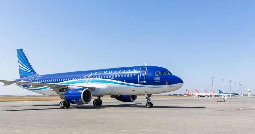 Птица стала причиной задержки рейса Баку-Анталья