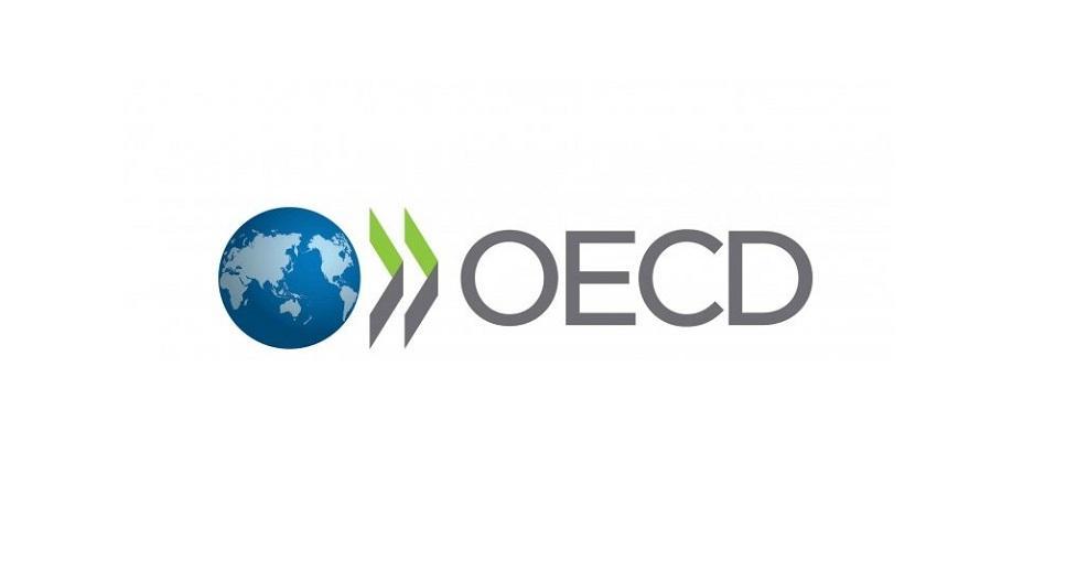 Азербайджан будет представлен в Комитете содействия развитию OECD