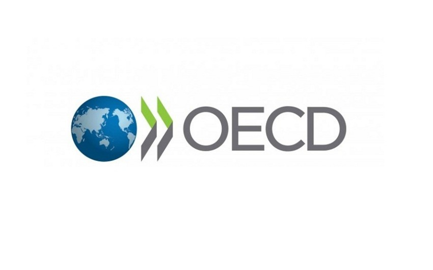 Azerbaijan will be represented in OECD Development Assistance Committee