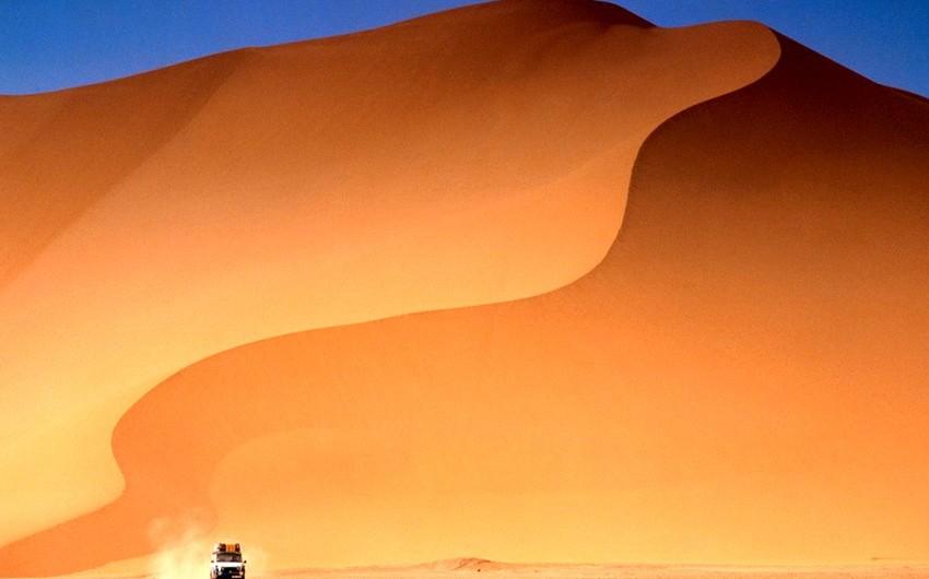 Alimlər Saxara səhrasını yaşıllaşdırmağın yollarını tapıblar